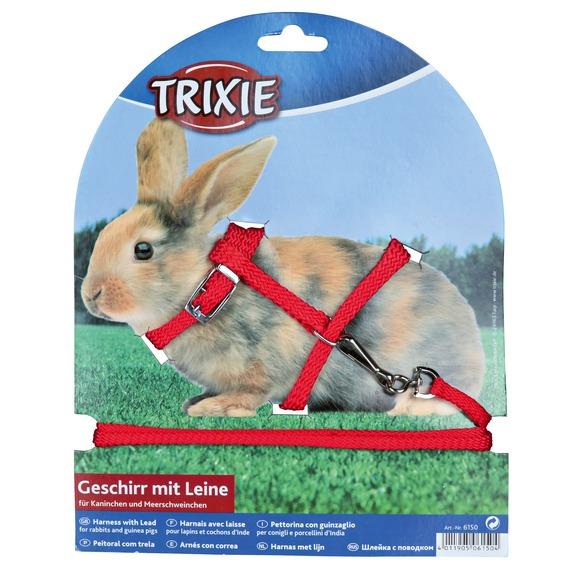 Как одеть шлейку на кролика пошаговое